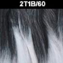 2T1B/60