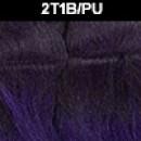 2T1B/PU
