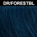 DR/FORESTBL