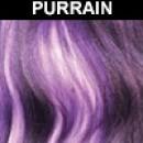 PURRAIN