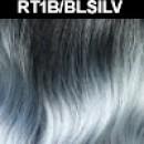 RT1B/BLSILV