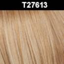 T27/613