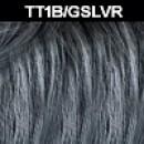 TT1B/GSLVR