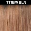 TT1B/MBLN