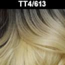 TT4/613