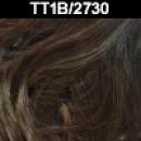 TT1B/2730