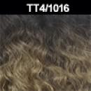 TT4/1016