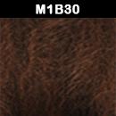 M1B30