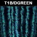 T1B/DGREEN