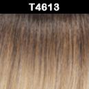 T4613